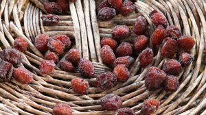 marché aux fruits anciens orpierre